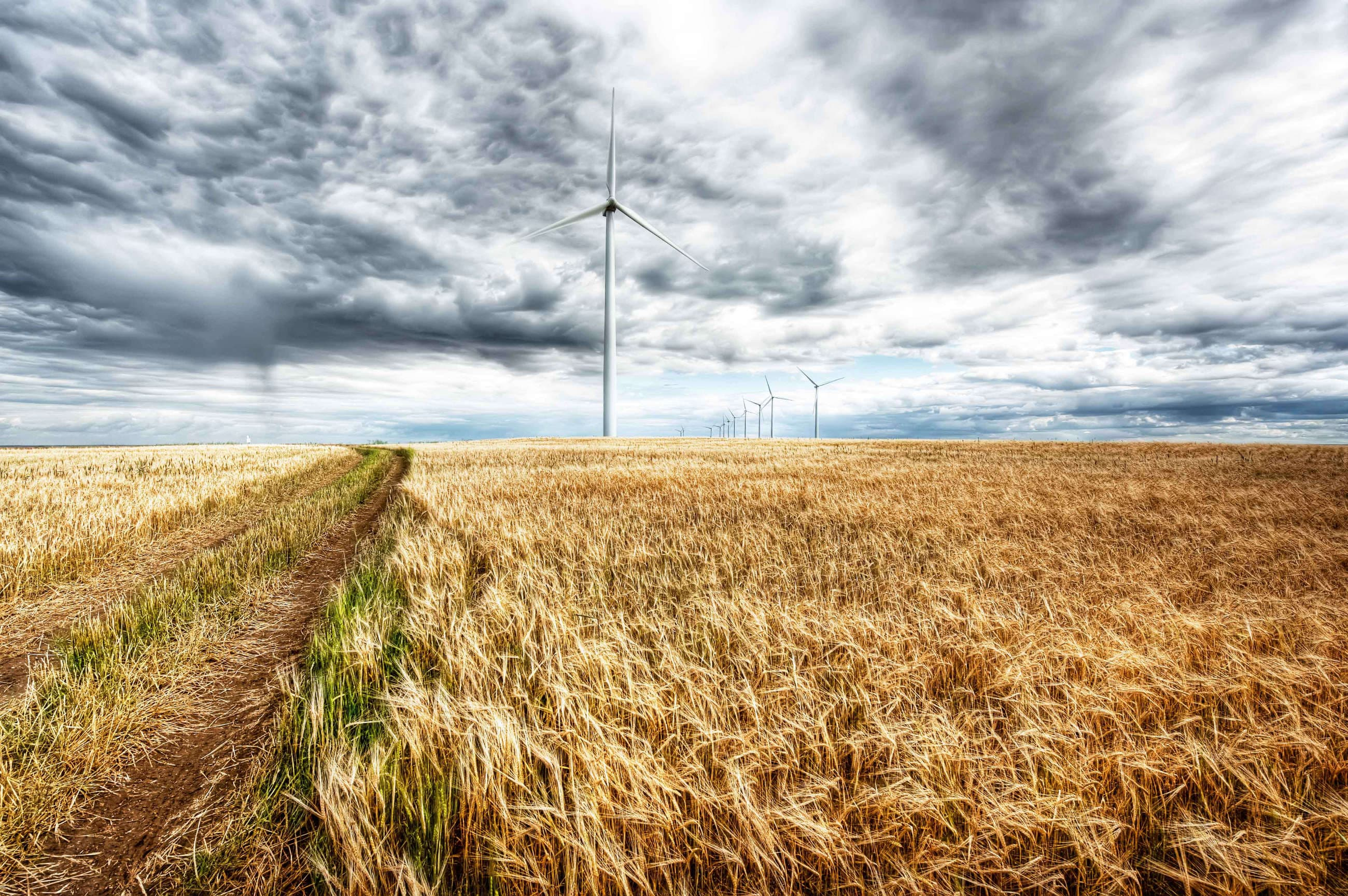 Projet de parc éolien Adelaide, Chin Chute