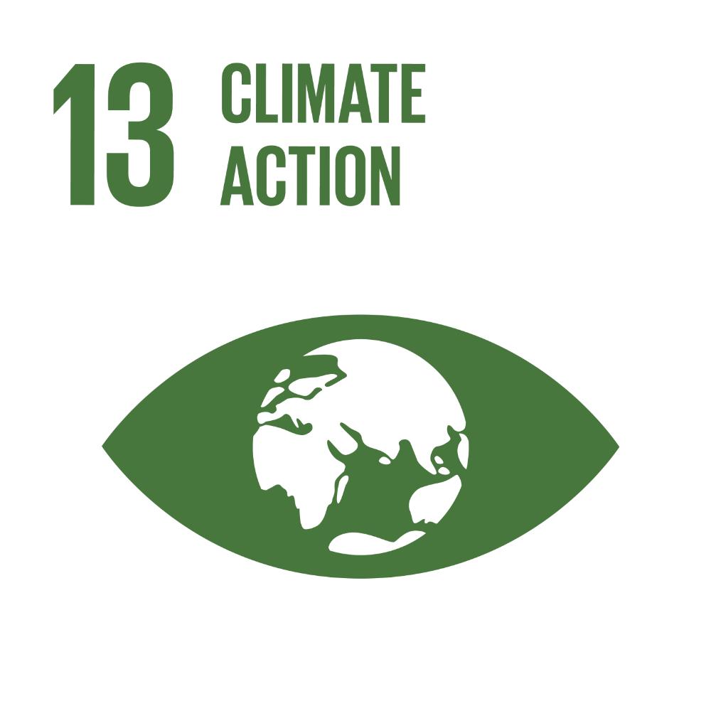 UN Global Goal: Climate Action