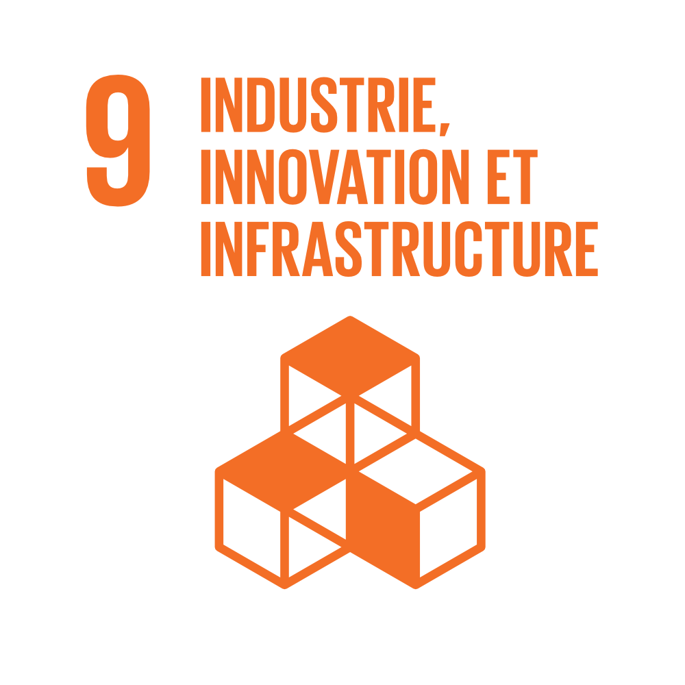 Industrie, Innovation et Infrastructures
