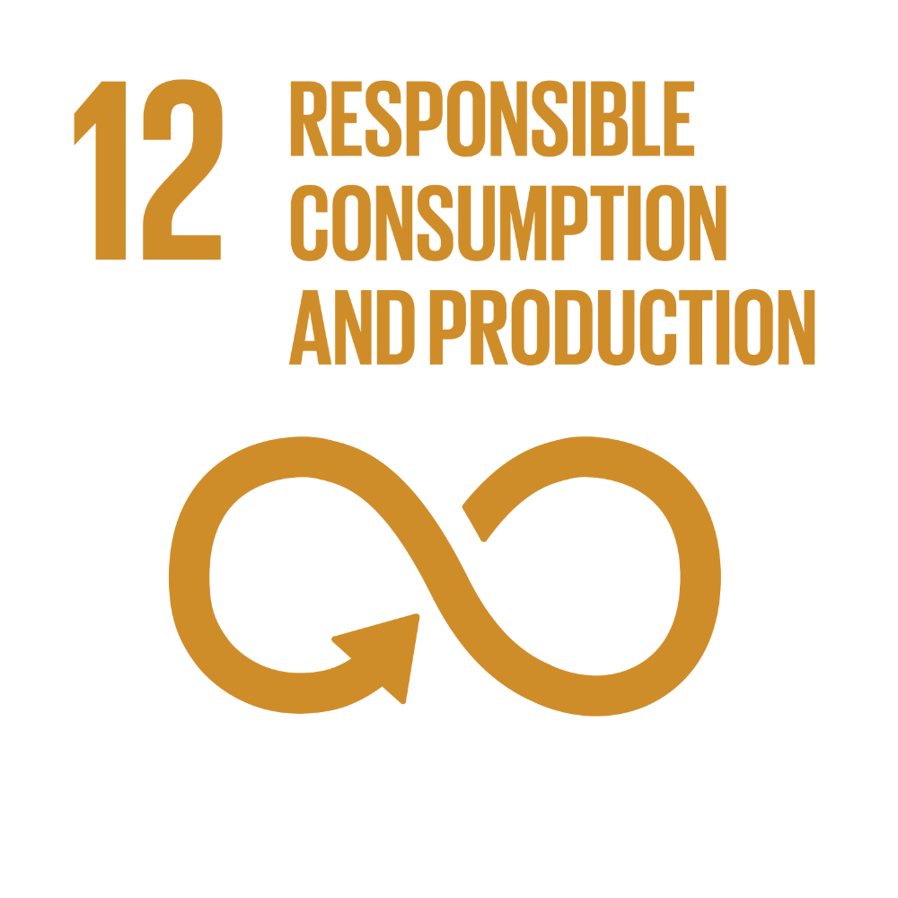 UN Global Goal: Responsible Consumption and Production