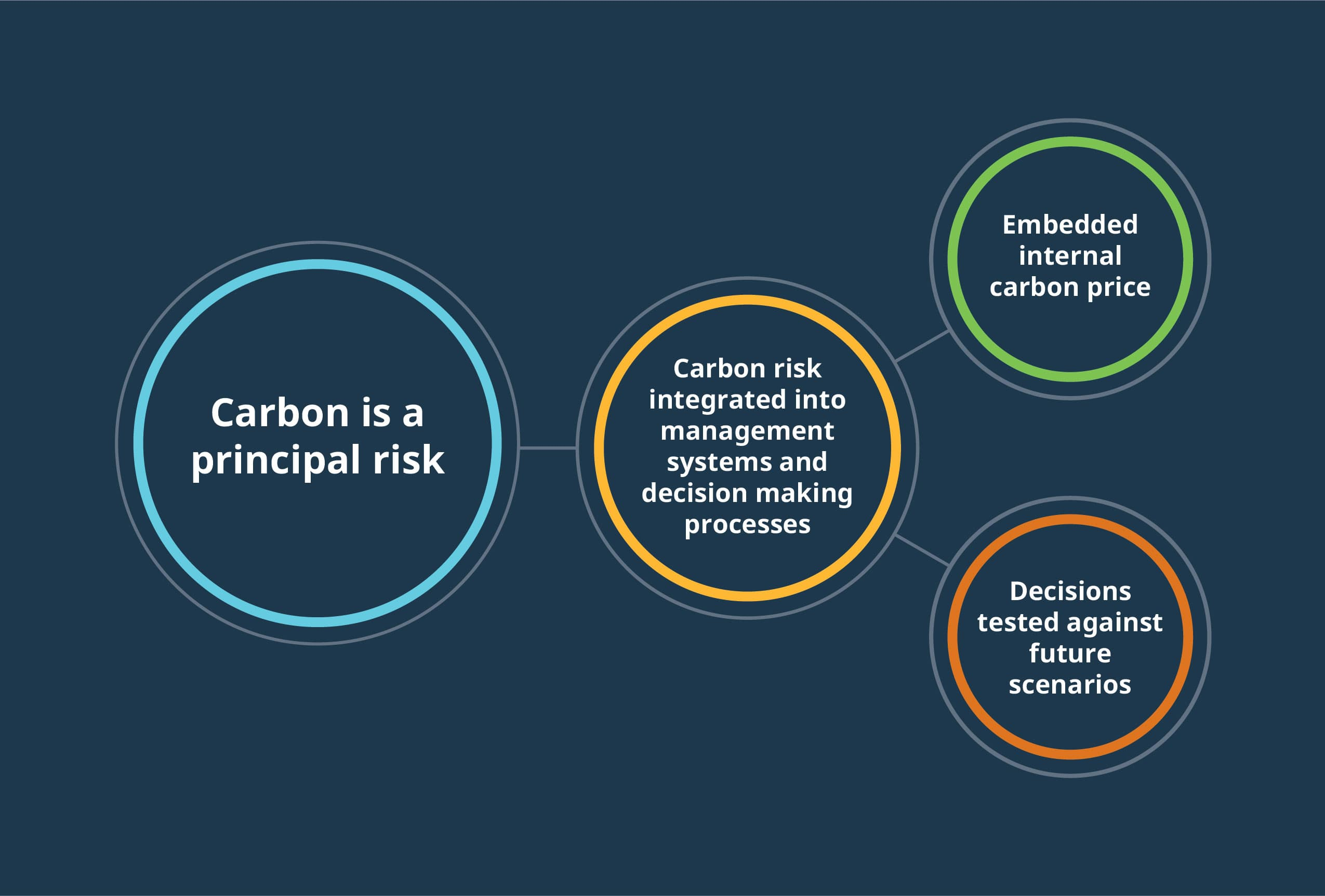 An illustrative graphic that shows how carbon is a principal risk but can be integrated into management systems to be tested against future scenarios