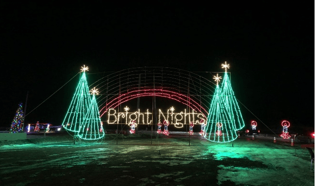 Dark sky with bright christmas lights displaying four christmas trees and the words bright nights